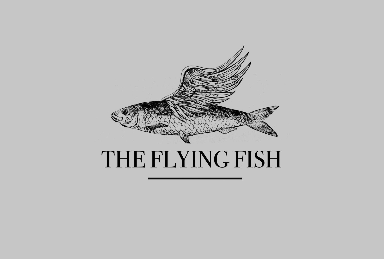 flying-fish_n